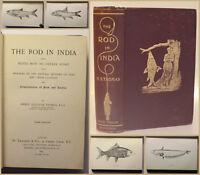 Thomas The Rod in India 1897 Ichthyologie Fischkunde Fische Naturwissenschaft xy