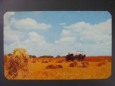 Amish Farm Horse Drawn Wagon Northern Indiana IN Vintage Color Postcard 1950s