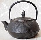 TETSUBIN CAST IRON LARGE TEA POT/ TEA KETTLE/ 600 ml/ SIGNED