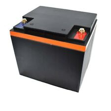 LiFePO4 12V 50Ah Lithium-Iron-Phosphate Battery Pack 12 V 50 Ah +BMS Duty-Free