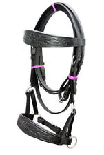Black leather sidepull bitless bridle hand carving on brow & noseband Cob.