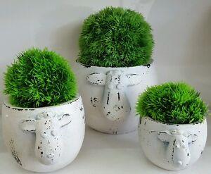 Set of 3 X rustic black n white sheep pot w artifical hedge plant - Home deco