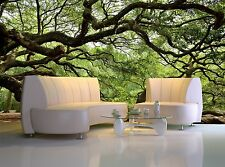 Tree Oak Wall Mural Photo Wallpaper GIANT WALL DECOR Paper Poster Free Paste