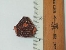 Canadian Ski Coaches Skiing Pin  (#1003)