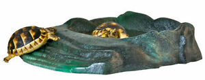 Zoo Med Repti Ramp Bowl Reptile Dish Perfect for a tortoise