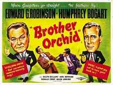 BROTHER ORCHID Movie POSTER 30x40 Edward G Robinson Ann Sothern Humphrey Bogart