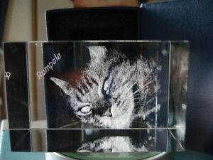 PERSONALIZED CRYSTAL LASER PHOTO ENGRAVED  MEMORIAL CATS DOGS PET GIFT 2D-3D S11