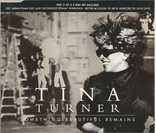 Tina Turner - Something Beautiful Remains 1996 CD single
