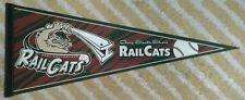 Gary South Shore RailCats Full Size NoL MiLB baseball Pennant