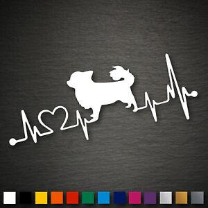 20785 Chihuahua Herzschlag Aufkleber 181x70mm Farbwahl Car Decal Sticker