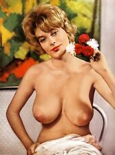 ANNETTE CASIR VINTAGE NUDE BIG BREASTS 8. 5 X 11 GLOSSY COLOR PHOTO!!