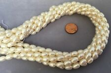 "16"" Strand 7x9mm EXCEPTIONAL Large White  FRESHWATER PEARLS - AA Quality"