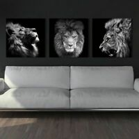 Wall Art Pictures Canvas Painting abstract Animal Lion Prints Living Room Poster