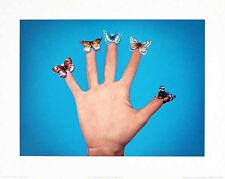 Jack Goldstein Some Butterflies, 1975 Poster Bild Kunstdruck 40x50cm - Portofrei