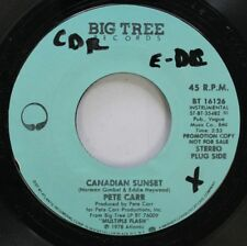 Rock 45 Pete Carr - Canadian Sunset / Rings Of Saturn On Big Tree Records