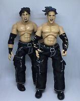 WWF Jakks TTL Hardyz Jeff Matt Hardy Wrestling Figure Finishing Moves 1 WM17 WWE