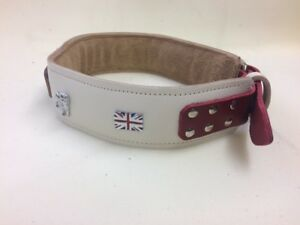 PADDED LEATHER DOG COLLAR FOR BULL BRITISH BULLDOG