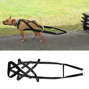 Heavy Duty Large Dogs Weight Pulling Harness K9 Exercises Training Vest Pitbull