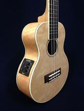 Caraya Quilted Maple Concert Ukulele,w/Built-in EQ+Lockable Hard Case UK-362EQN