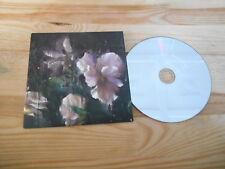 CD POP infine David-Guillou-Kourouma (12) canzone PROMO Village Green CB