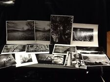 ROBERT L BECKHARD N.Y.C. Area Wildlife B&W Photos LOT OF 14 Diff. No Reserve!