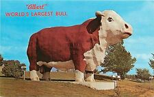 Audubon, Iowa / Albert / World's Largest Bull / Postcard / 1965 / zip 68114
