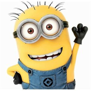 Minions Despicable me 2 blank card 100% official card suitable for any occasion