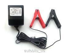 AUTO Chargeur de batterie véhicule personnel 12V voiture Cable