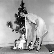 1960s Brunette nude pinup in see thru gown at Xmas tree 8 x 8  Photograph
