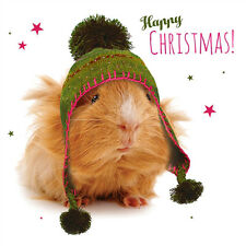 Guinea Pig Charity Christmas Cards Pack of 10 Cosy Bobble Hat Xmas Cards NEW