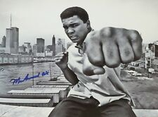 Muhammad Ali on Rooftop Punching (Framed Art Signed Sports Memorabilia)