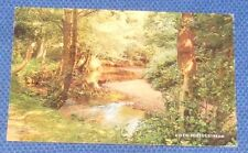 A NEW FOREST STREAM 1968