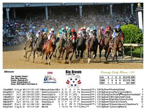 Big Brown Kentucky Derby Winner 2008 with  Lifetime Past Performance