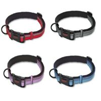 Halti Collar For Dog Cat Puppy | Adjustable Sizes | Ancol Pet Strong For Safety