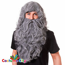 Adults Grey Curly Wizard God Beard & Wig Gandalf Hagrid Fancy Dress Accessory