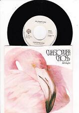 45 U/min LP-(12-Inch) Pop Vinyl-Schallplatten (1980er) mit Rock