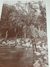 Ephemera 1935 Picture Australian Native Spear Fishing Queensland g1l
