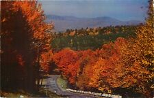 Jack O'Lantern Inn Motor Resort Woodstock New Hampshire NH Postcard