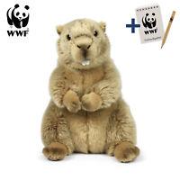 Original WWF Stofftier Plüschtier Murmeltier (23cm) mit Block und Stift
