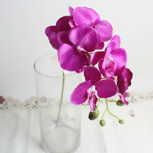 Real Touch Latex Phalaenopsis Flower Bridal Wedding Bouquet Home Nice Fashion