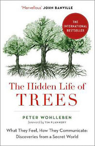 The Hidden Life of Trees - What They Feel, How They Communicate