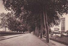 LUCCA - Mura Cortina e Abside di S.Frediano 1945