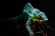 Large Framed Print - Funky Neon Chameleon (Picture Poster Lizard Animal Gecko)