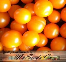 (15) SUNSUGAR SUN SUGAR TOMATO SEED ~ SWEETEST TOMATO AVAILABLE -  Comb. S&H