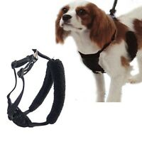 Yuppie Puppy Mesh Dog Puppy Anti-Pull Harness -Stops Pulling Instantly NEW