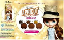 FRESH LIGHT Japan Blythe Bubble Hair Sweet Apricot Color DYING KIT