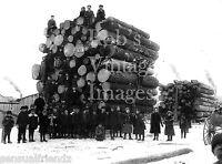 Vintage Logging photo Big Load w/ Kids Wisconsin 1899 print Antique History