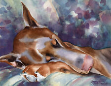 Red Doberman Pinscher Dog Watercolor 8 x 10 Art Print w/Coa by Artist Djr