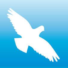 Warnvogel Aufkleber 15cm weiß Habicht Vogel Schreck Fenster Schutz Deko Folie