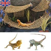 3 Shapes Reptile Hammock Bearded Dragon Lizard Lounger Natural Seagrass Hammock